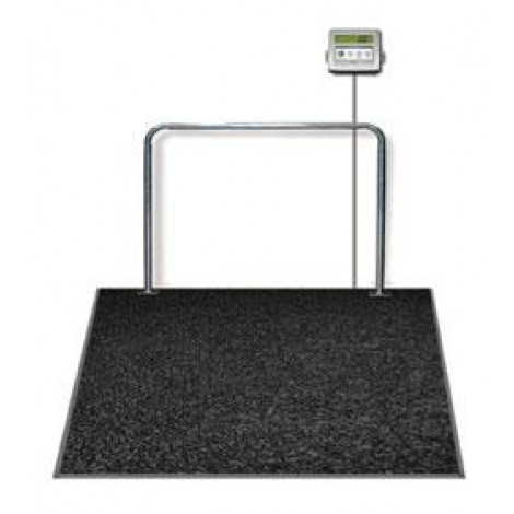 Rice Lake SD-1150 Summit Dialysis Scale