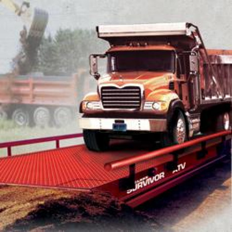 Rice Lake Survivor ATV Steel Deck Truck Scale