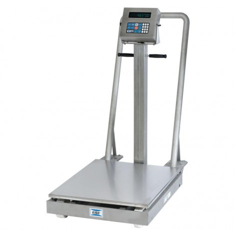 Avery Weigh-Tronix Porta-Tronic 800 Series Portable Floor Scale
