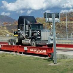 Rice Lake Survivor SR Low Profile Siderail Concrete Deck Truck Scale