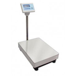 CCI PSC-RL Bench / Floor Scale