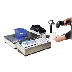 Rice Lake Counterpart Counting Scale Dual Channel with DIGI S-YC base system and bracket