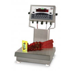 Rice Lake CW-90 Over/Under Checkweigher In Use