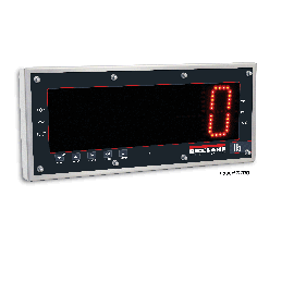 Rice Lake LaserLT-60 and LaserLT-100 Remote Displays